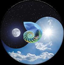 Les Ventres Libres Logo