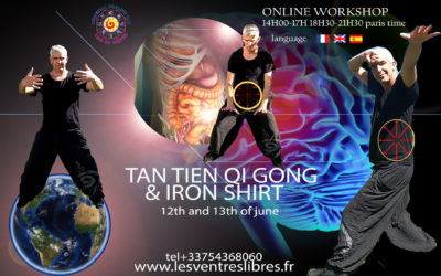 On Line – Course Tan Tien Qi Gong – Iron Shirt