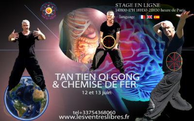 En ligne – Stage Tan Tien Qi Gong – Chemise de Fer