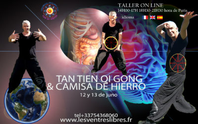 On Line – Course Tan Tien Qi Gong – Camisa de hierro